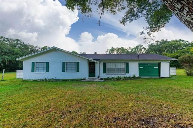 13033 Douglas Road, Dade City, FL 33525 (MLS #G5048217) :: Orlando Homes Finder Team