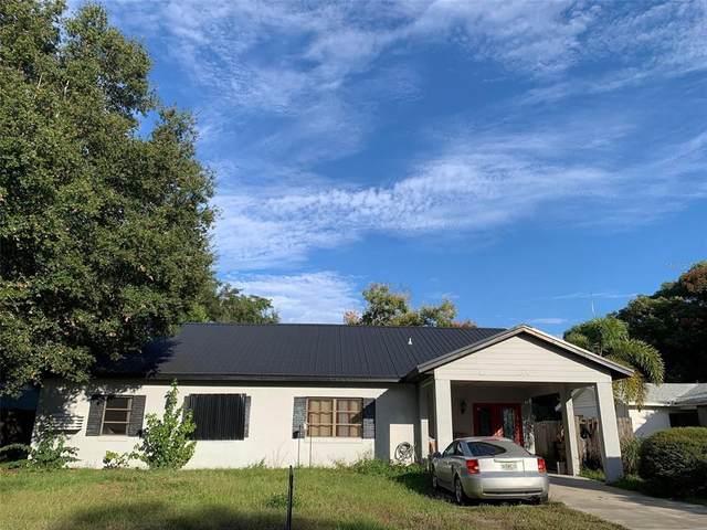 1350 Palm Drive, Mount Dora, FL 32757 (MLS #G5048252) :: Kreidel Realty Group, LLC