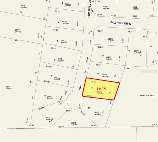 Lot 14 Fox Hollow Drive, HAMPTON, FL 32044 (MLS #GC439823) :: Team Saveela & Ace Remax Professionals