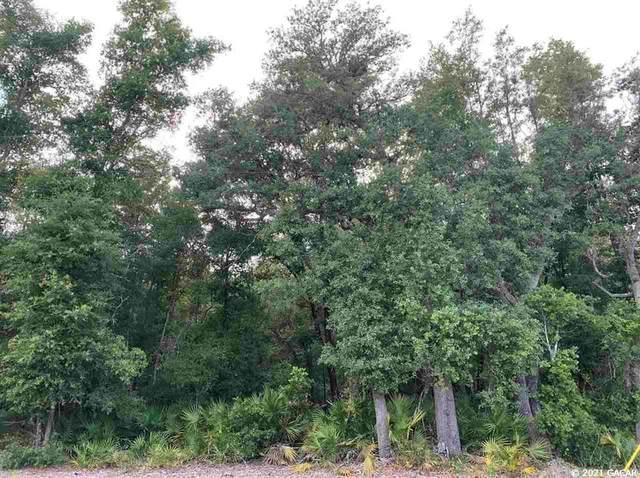 117 Gas Easement Road, Interlachen, FL 32148 (MLS #GC444938) :: Better Homes & Gardens Real Estate Thomas Group