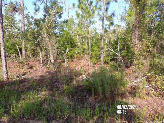 239 Delaware Drive, Hawthorne, FL 32640 (MLS #GC446794) :: Stewart Realty & Management