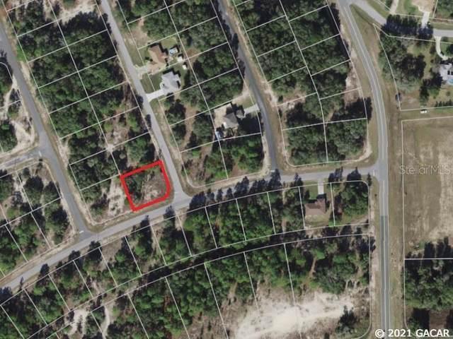 11670 N Providence Way, Citrus Springs, FL 34433 (MLS #GC447209) :: Stewart Realty & Management