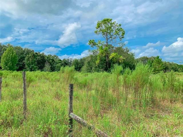 2049 SW 45th Avenue, Bell, FL 32619 (MLS #GC447977) :: Vacasa Real Estate