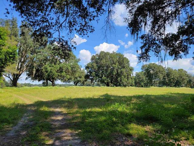 16116 NW 12th Avenue, Newberry, FL 32669 (MLS #GC448212) :: Better Homes & Gardens Real Estate Thomas Group
