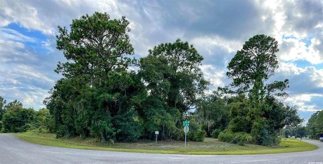 000 SE 204 Terrace, LOCHLOOSA, FL 32640 (MLS #GC448300) :: Stewart Realty & Management