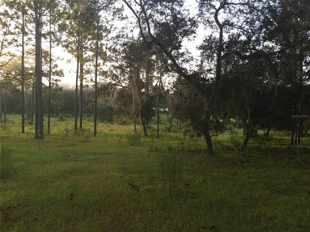 19702 SW 179TH Place, Archer, FL 32618 (MLS #GC500027) :: Pristine Properties