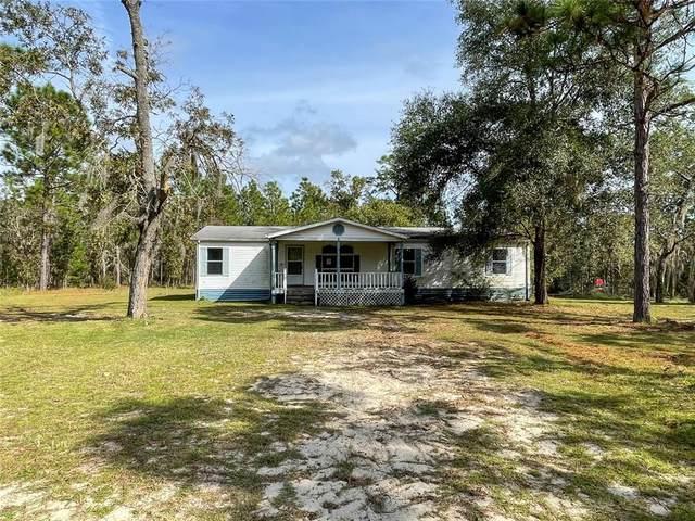 146 Whirlwind Loop, Hawthorne, FL 32640 (MLS #GC500128) :: Delgado Home Team at Keller Williams