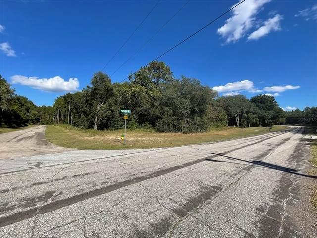 10249 N Athenia Drive, Citrus Springs, FL 34434 (MLS #GC500272) :: Bustamante Real Estate