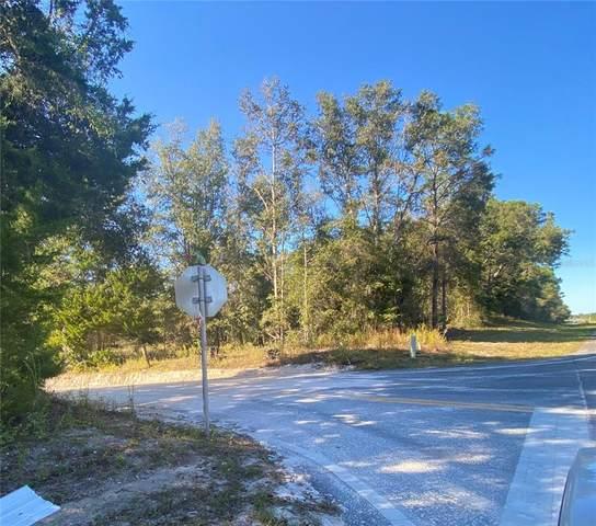 TBD N Us Hwy 129 Highway, Bell, FL 32619 (MLS #GC500286) :: Pristine Properties