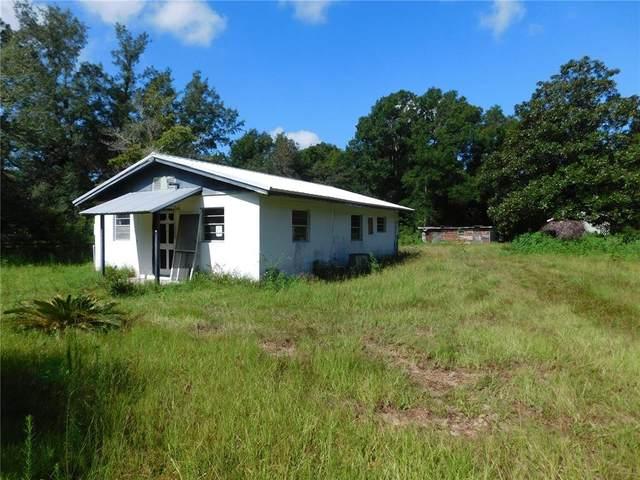 117 Cedar Street, Melrose, FL 32666 (MLS #GC500443) :: RE/MAX Local Expert