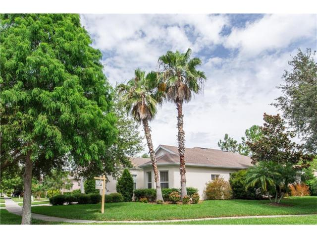 9614 Greenpointe Drive, Tampa, FL 33626 (MLS #H2202097) :: The Duncan Duo & Associates