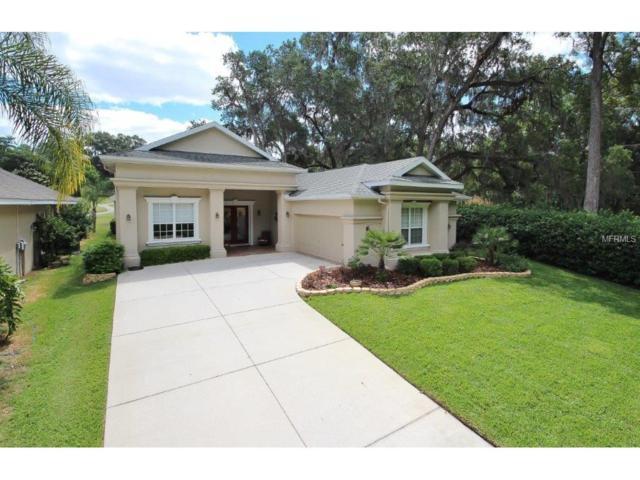 12236 Sunriver Lane, Dade City, FL 33525 (MLS #H2203449) :: Team Bohannon Keller Williams, Tampa Properties