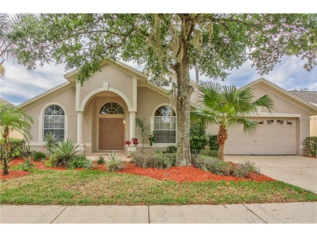 9439 Larkbunting Drive, Tampa, FL 33647 (MLS #H2203577) :: The Duncan Duo & Associates