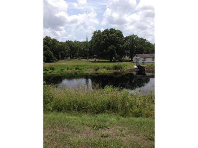 2400 Evergreen Lane, Lutz, FL 33558 (MLS #H2203586) :: The Duncan Duo & Associates
