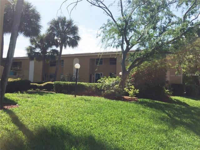 4232 La Dega Court, Tampa, FL 33611 (MLS #H2203711) :: The Duncan Duo & Associates