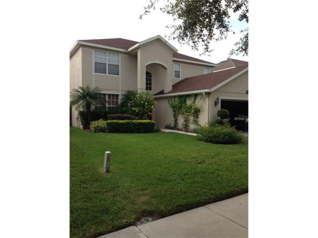 19126 Cypress Reach Lane, Tampa, FL 33647 (MLS #H2203787) :: Team Bohannon Keller Williams, Tampa Properties