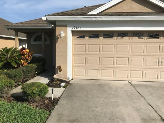 19323 Gophertrail Place, Land O Lakes, FL 34638 (MLS #H2203813) :: Cartwright Realty