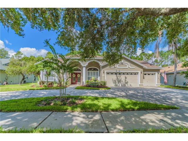 5605 Glencrest Boulevard, Tampa, FL 33625 (MLS #H2203935) :: Arruda Family Real Estate Team