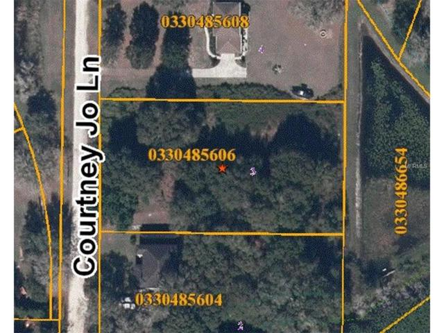 19709 Courtney Jo Lane, Lutz, FL 33549 (MLS #H2203938) :: The Duncan Duo & Associates
