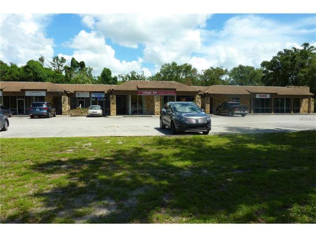 3938 Lake Padgett Drive, Land O Lakes, FL 34639 (MLS #H2203943) :: Team Bohannon Keller Williams, Tampa Properties