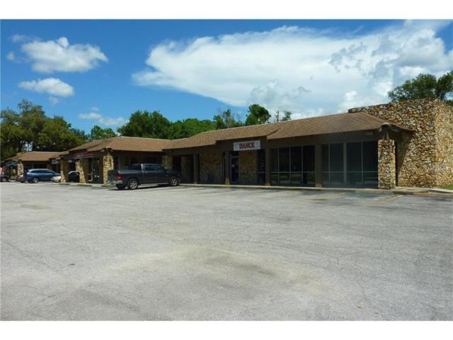 3941 Lake Padgett Drive, Land O Lakes, FL 34639 (MLS #H2203944) :: Team Bohannon Keller Williams, Tampa Properties