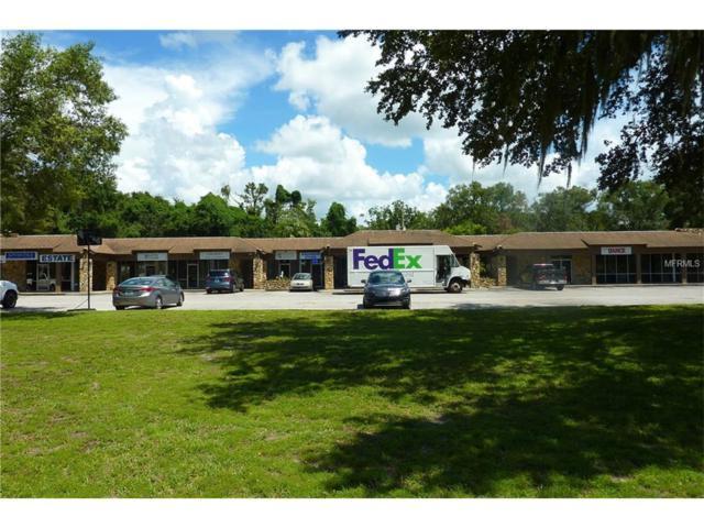 3940 Lake Padgett Drive, Land O Lakes, FL 34639 (MLS #H2203945) :: Team Bohannon Keller Williams, Tampa Properties