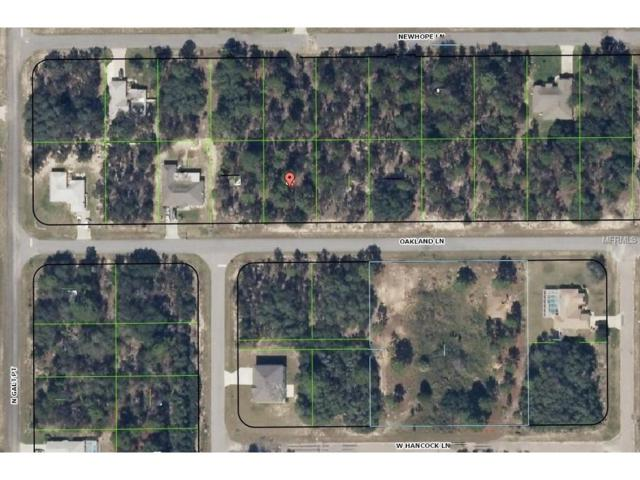 2443 W Oakland Lane, Citrus Springs, FL 34434 (MLS #H2203963) :: Team Pepka