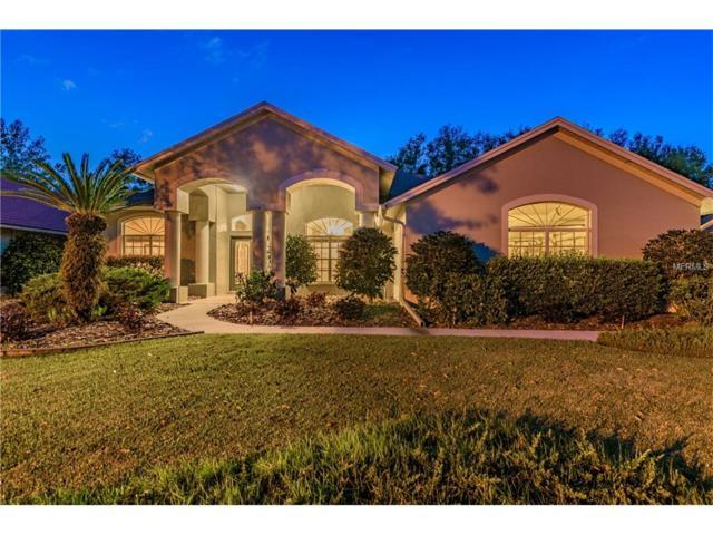 3609 Swans Landing Drive, Land O Lakes, FL 34639 (MLS #H2204033) :: Cartwright Realty