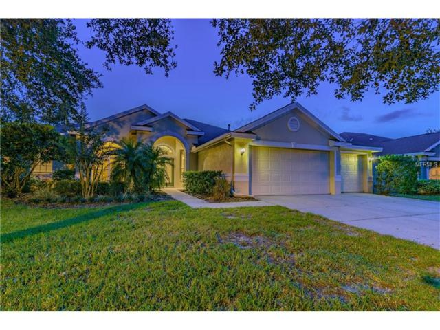 18112 Sugar Brooke Drive, Tampa, FL 33647 (MLS #H2204055) :: Team Bohannon Keller Williams, Tampa Properties