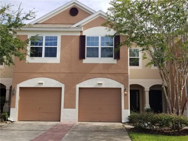 26527 Chimney Spire Lane, Wesley Chapel, FL 33544 (MLS #H2204075) :: The Duncan Duo & Associates