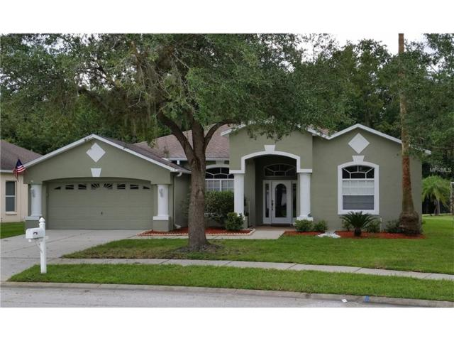 3625 Grand Forks Drive, Land O Lakes, FL 34639 (MLS #H2204082) :: Griffin Group
