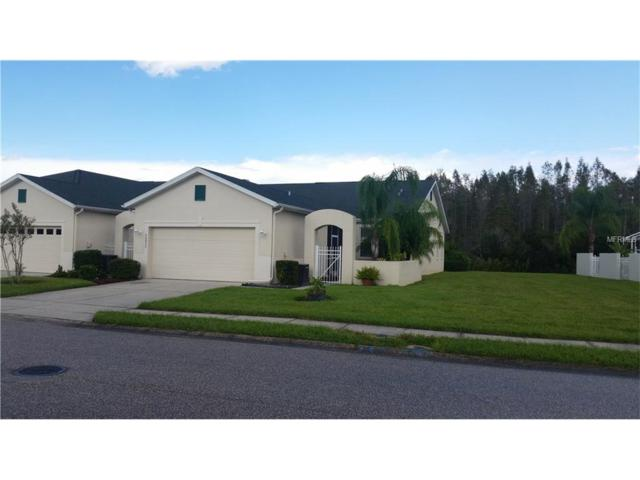20837 Diamonte Drive, Land O Lakes, FL 34637 (MLS #H2204166) :: Arruda Family Real Estate Team