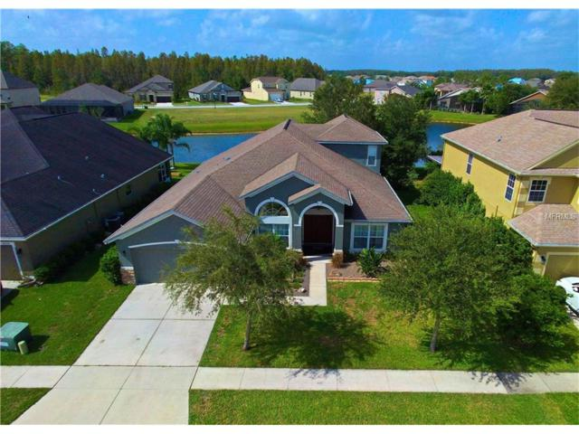 4547 Pointe O Woods Drive, Wesley Chapel, FL 33543 (MLS #H2204186) :: Griffin Group