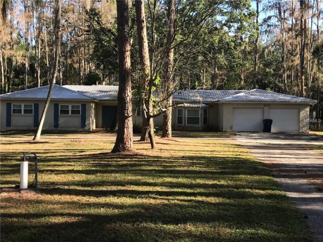 6716 Bonnie Blue Drive, Wesley Chapel, FL 33544 (MLS #H2204277) :: Team Bohannon Keller Williams, Tampa Properties
