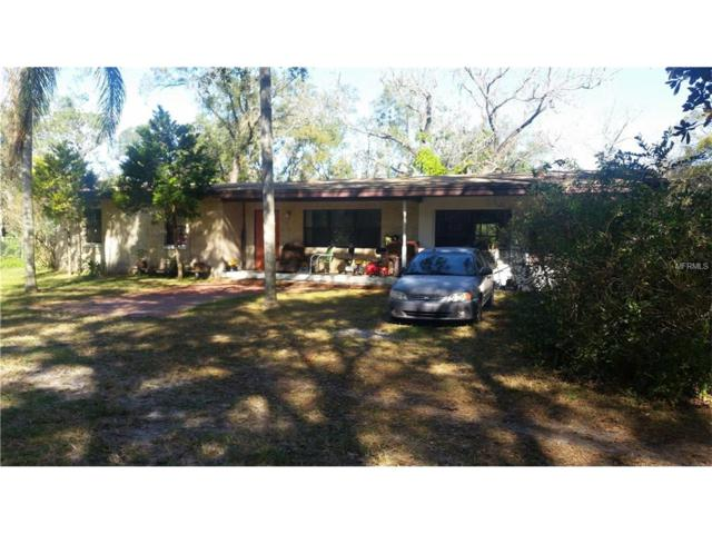 2412 Wallace Road, Lutz, FL 33549 (MLS #H2204299) :: Griffin Group