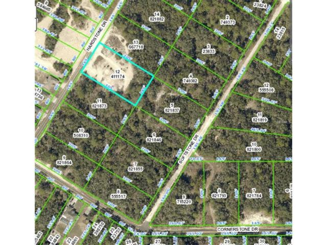 8198 Hardstone Drive, Webster, FL 33597 (MLS #H2204301) :: NewHomePrograms.com LLC