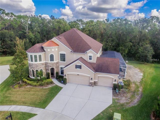 3242 Watermark Drive, Wesley Chapel, FL 33544 (MLS #H2204304) :: Griffin Group