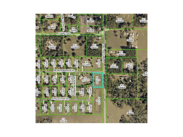 Spring Lake Highway, Brooksville, FL 34602 (MLS #H2204339) :: Godwin Realty Group