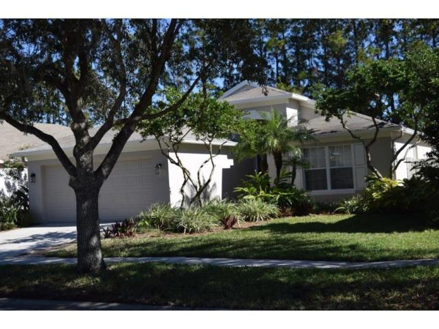 4452 Marchmont Boulevard, Land O Lakes, FL 34638 (MLS #H2204350) :: Team Bohannon Keller Williams, Tampa Properties