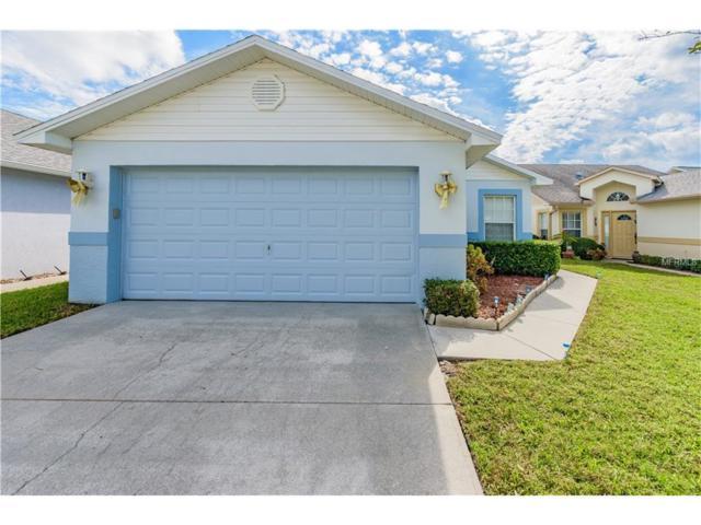 6125 Gentle Ben Circle, Wesley Chapel, FL 33544 (MLS #H2204368) :: Team Bohannon Keller Williams, Tampa Properties