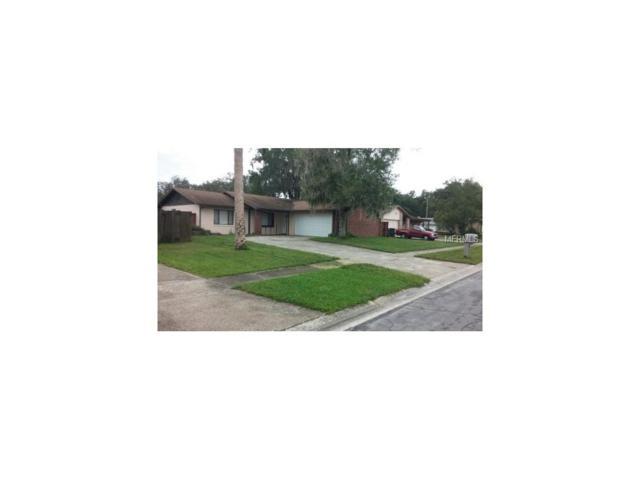 3628 Coppertree Circle, Brandon, FL 33511 (MLS #H2204371) :: Team Turk Real Estate