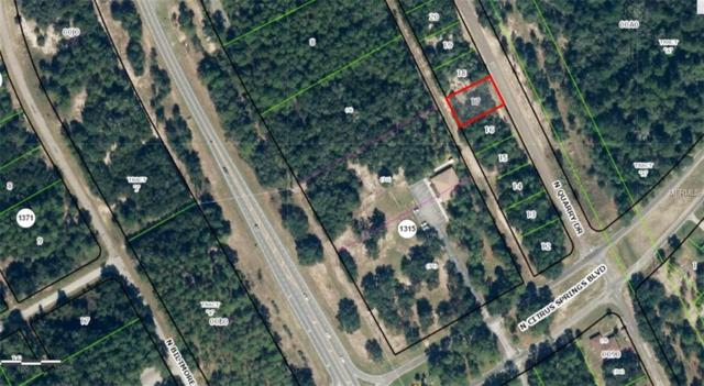 10420 N Quarry Drive, Citrus Springs, FL 34434 (MLS #H2204473) :: Mark and Joni Coulter | Better Homes and Gardens