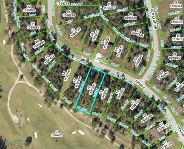 0 Hickory Oak Drive, Brooksville, FL 34601 (MLS #H2204475) :: The Duncan Duo Team