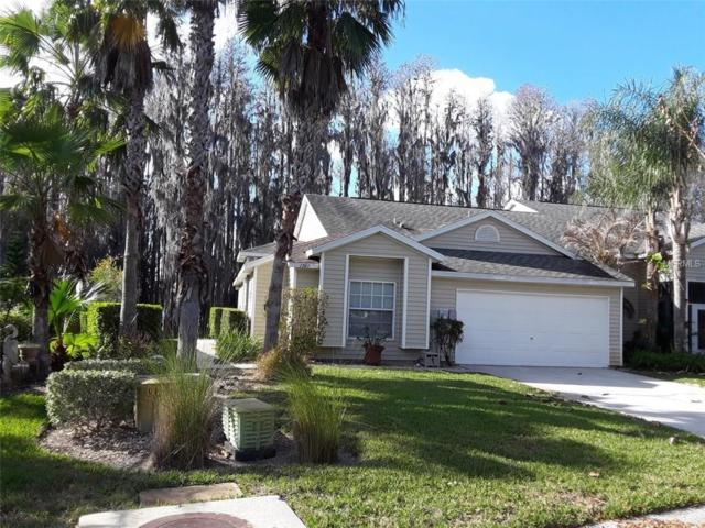 1707 Heron Cove Drive, Lutz, FL 33549 (MLS #H2204656) :: Delgado Home Team at Keller Williams