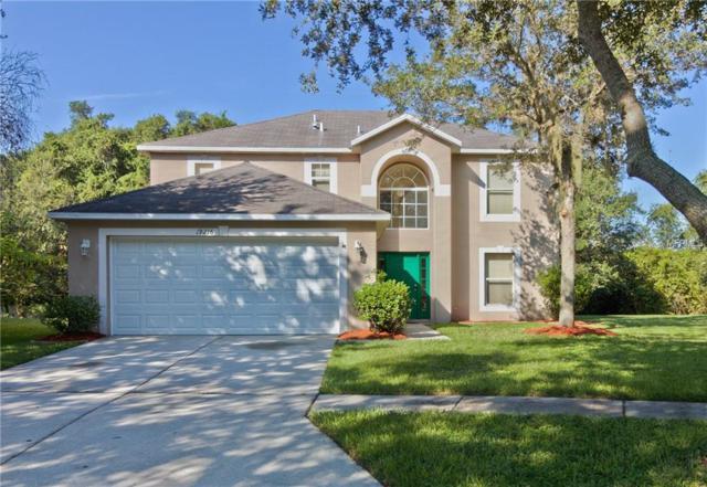 19216 Wood Sage Drive, Tampa, FL 33647 (MLS #H2204813) :: Team Bohannon Keller Williams, Tampa Properties