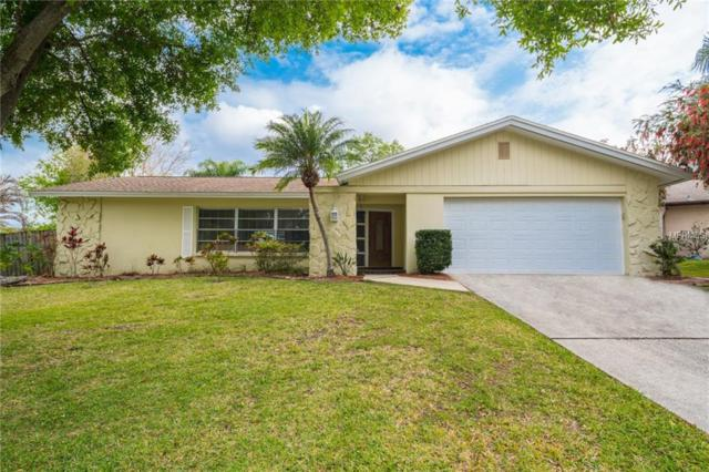 3101 Teal Terrace, Safety Harbor, FL 34695 (MLS #H2204847) :: Chenault Group