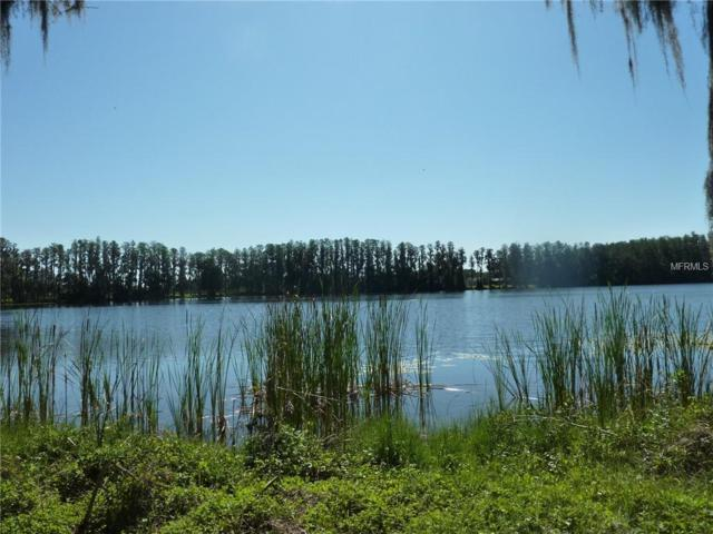 Wisteria Loop Road, Land O Lakes, FL 34639 (MLS #H2400028) :: Griffin Group