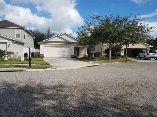 3212 Herne Bay Court, Land O Lakes, FL 34638 (MLS #H2400048) :: Arruda Family Real Estate Team