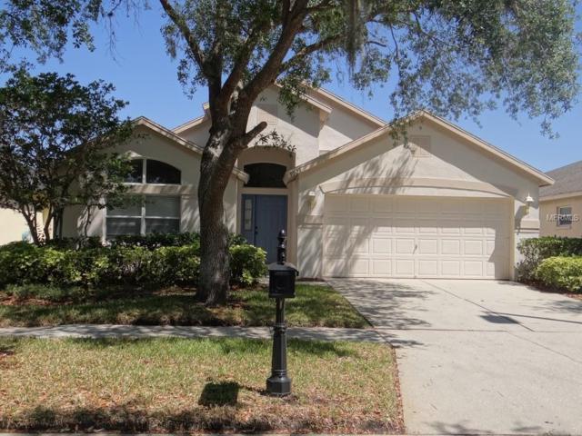 9923 Stockbridge Drive, Tampa, FL 33626 (MLS #H2400060) :: The Duncan Duo Team