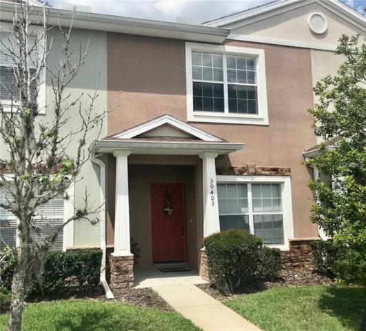 30403 Elderwood Drive, Wesley Chapel, FL 33543 (MLS #H2400068) :: Cartwright Realty